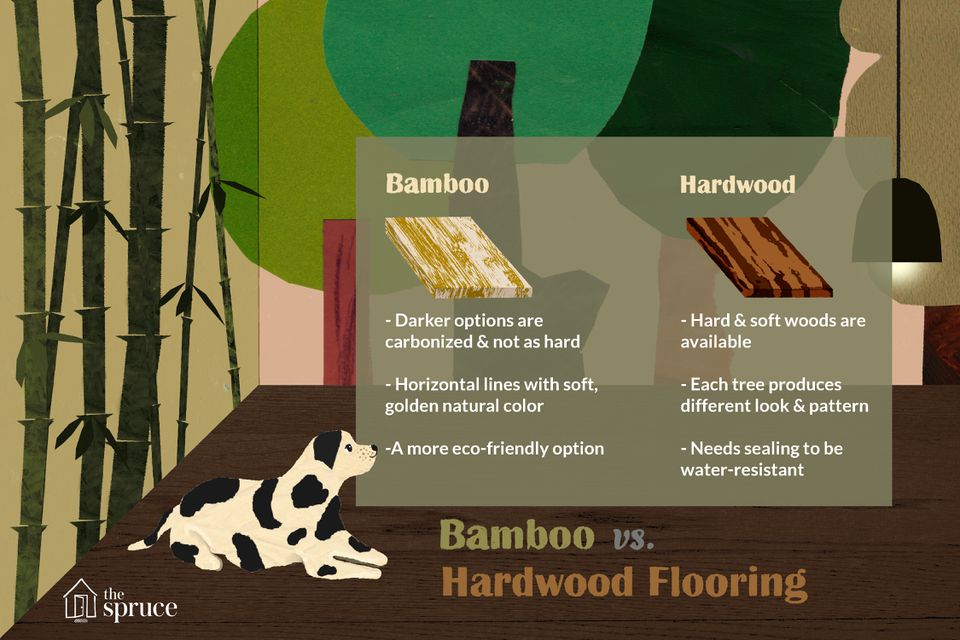 An illustration of a dog looking at a text box that outlines the differences between bamboo and hardwood flooring
