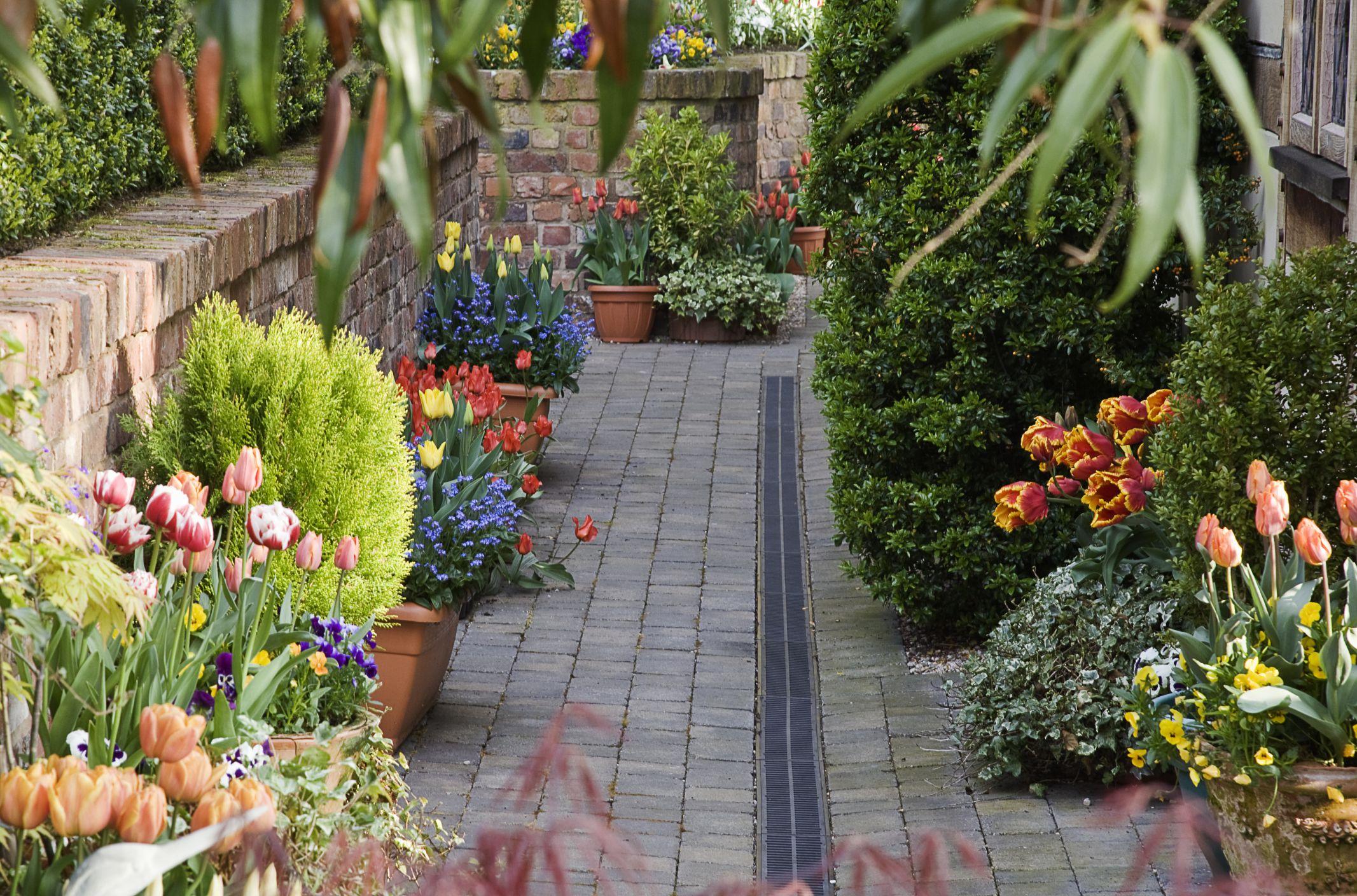 Fine 14 Ideas For Flowering Container Gardens Download Free Architecture Designs Scobabritishbridgeorg