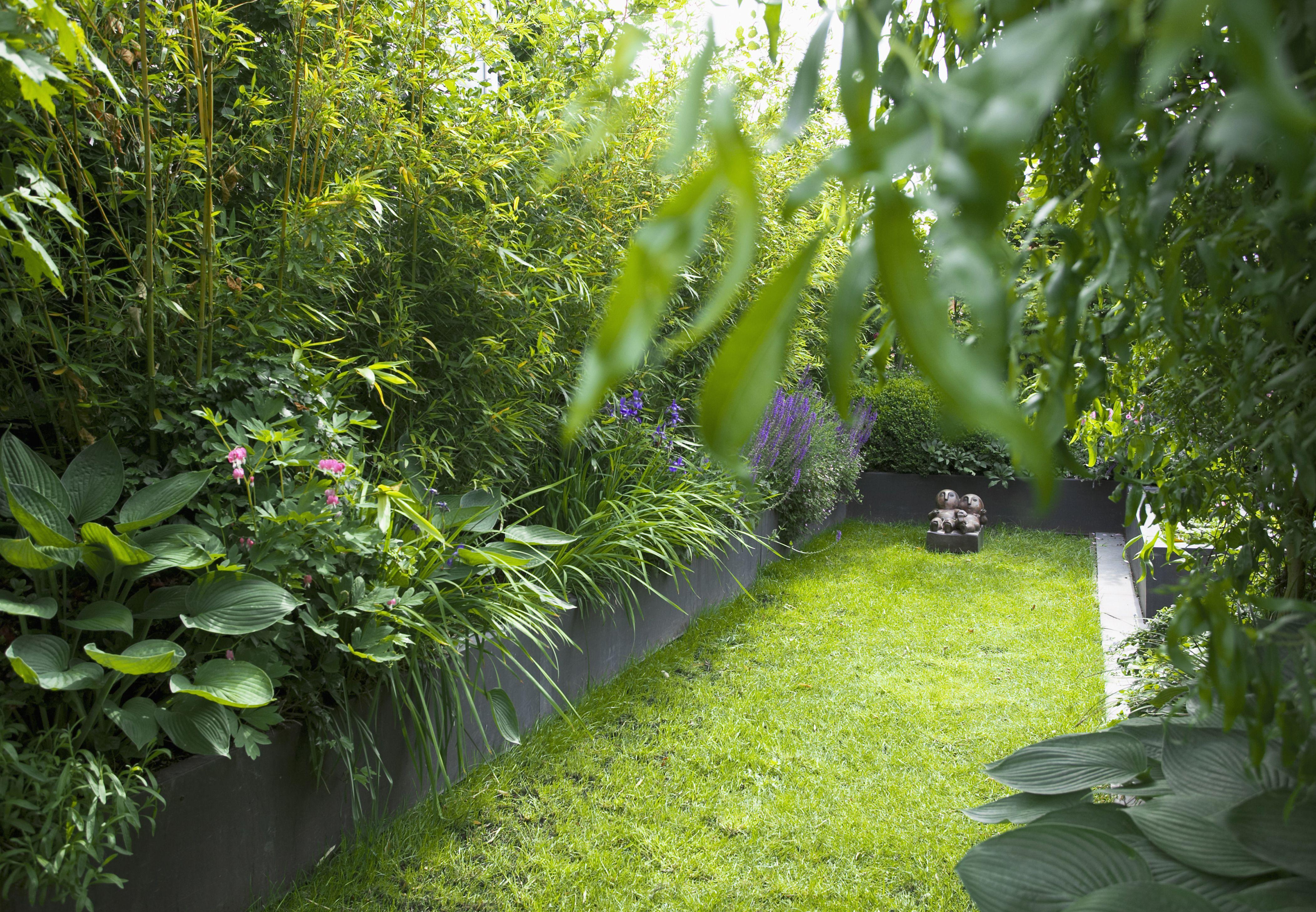 Un muro de privacidad de bambú y otras plantas tropicales