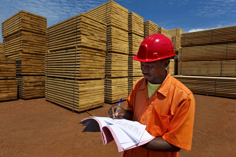 fsc timber