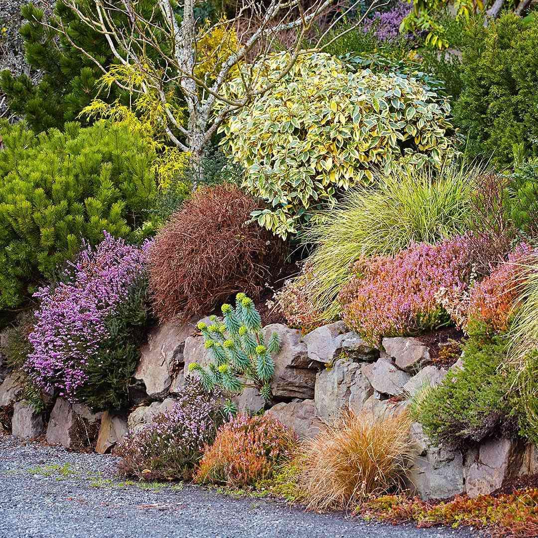 Xeriscape Garden Ideas