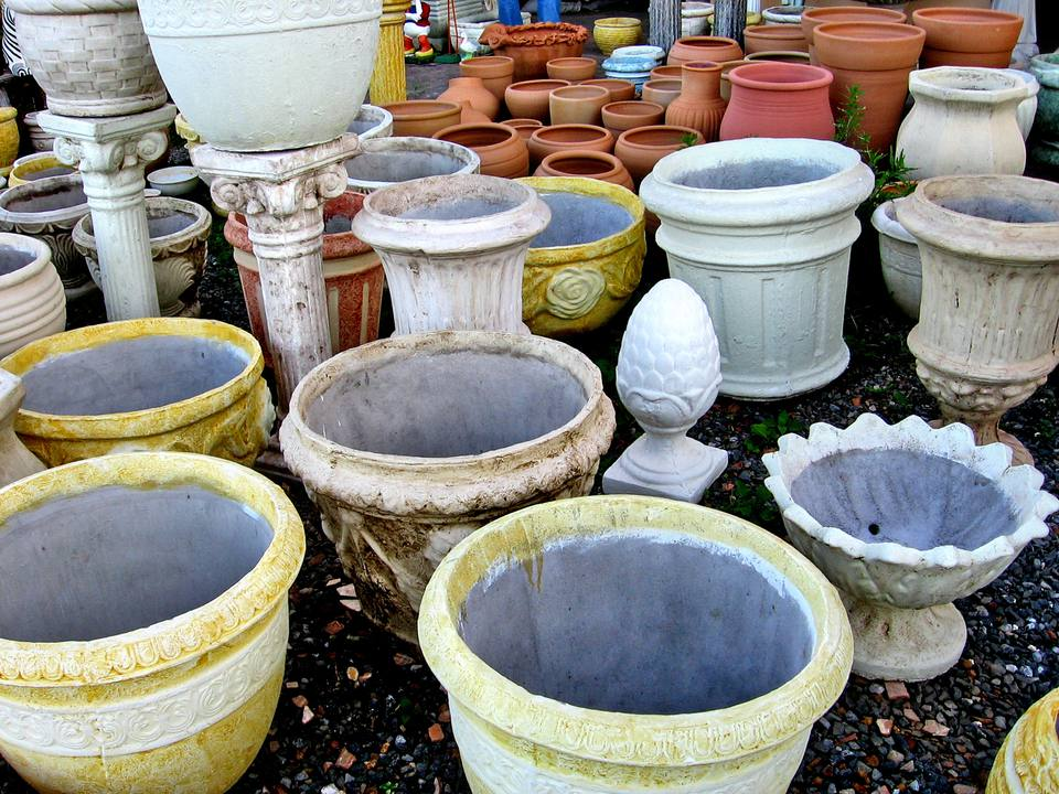 DIfferent Types of Plant Containers