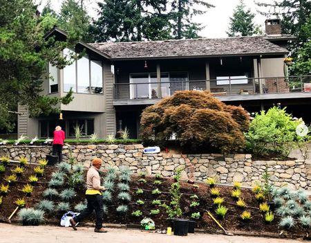 25 Garden Designs for Midcentury Modern Homes