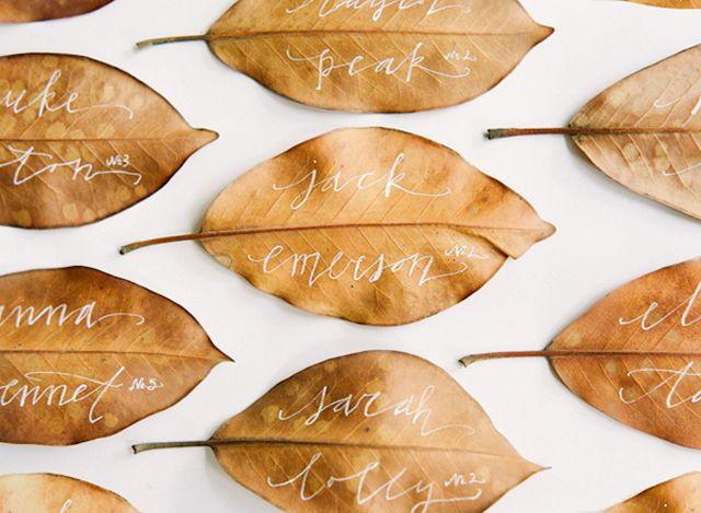 Tarjetas de acompañamiento de bodas de otoño