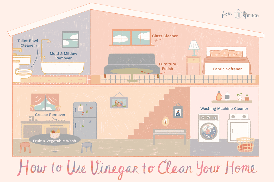 using vinegar to clean your house illustration