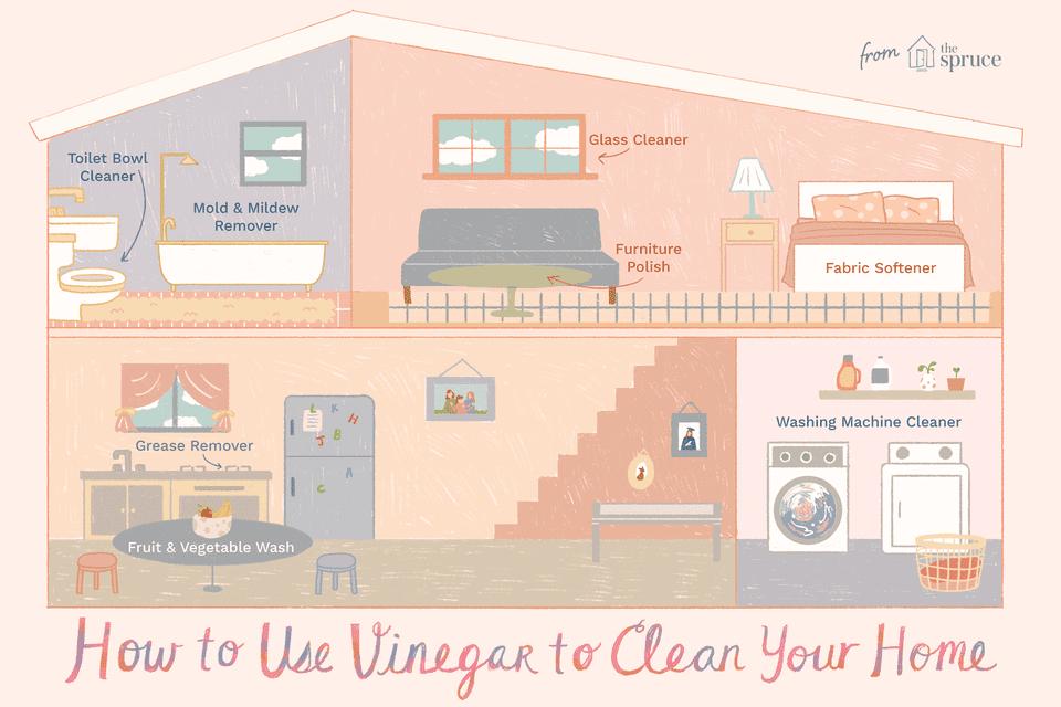 usando vinagre para limpiar la ilustración de tu casa