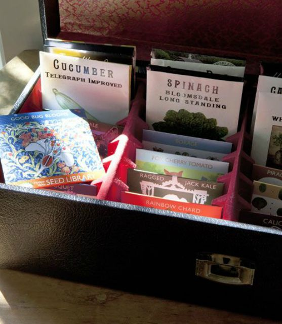 8-track case for seed storage
