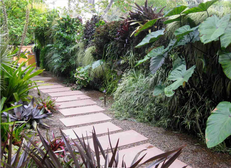 Living walls of plants along a paved walkway.