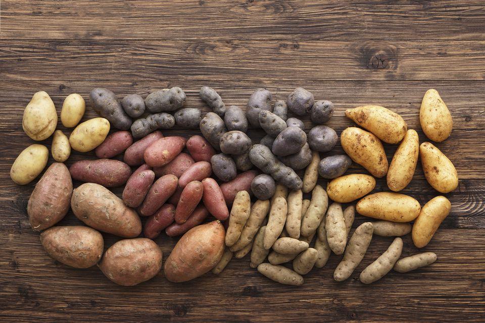 Heirloom potatoes in various colors