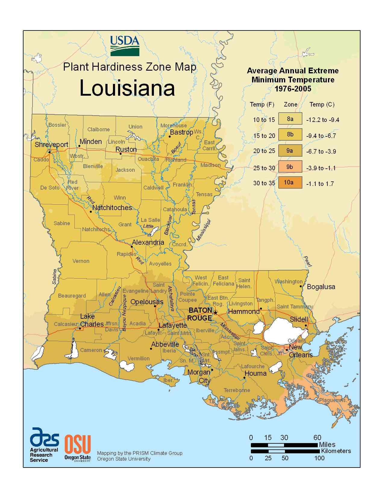 Photo of Louisiana Hardiness Zones