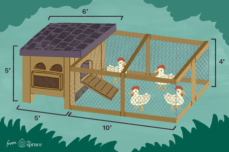 illustration of a sample chicken coop plan