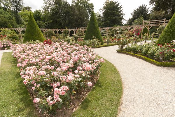 A French garden with stone pathways.