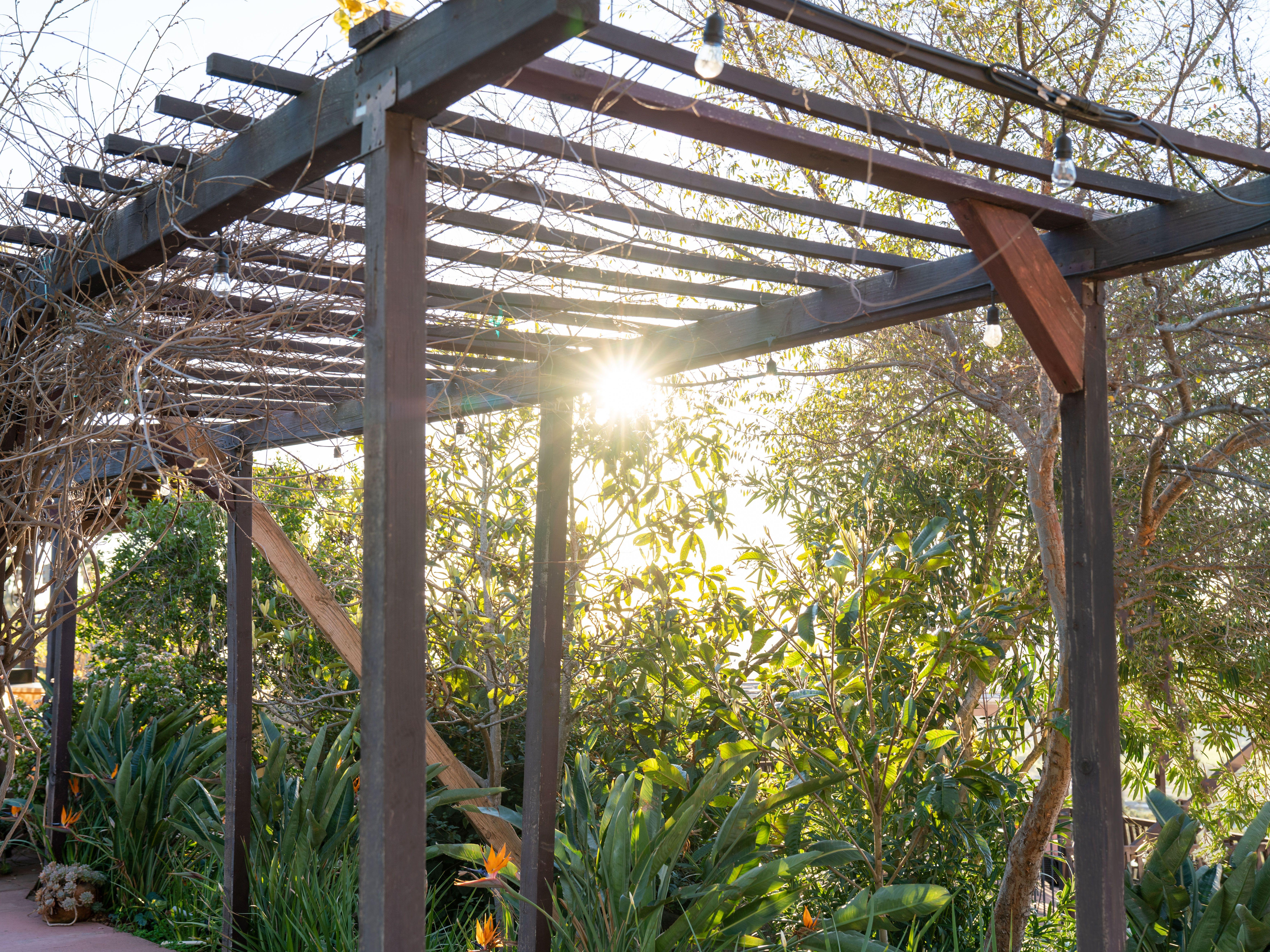 24 Perfect Pergola Design Ideas For Your Garden