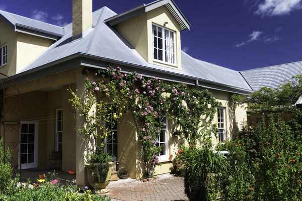 House with climbing roses