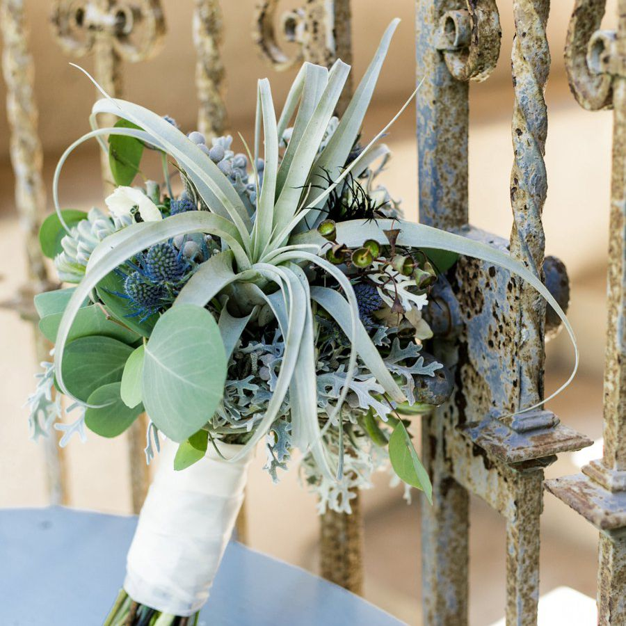 Thistle and Air Plant Summer Wedding Bouquet