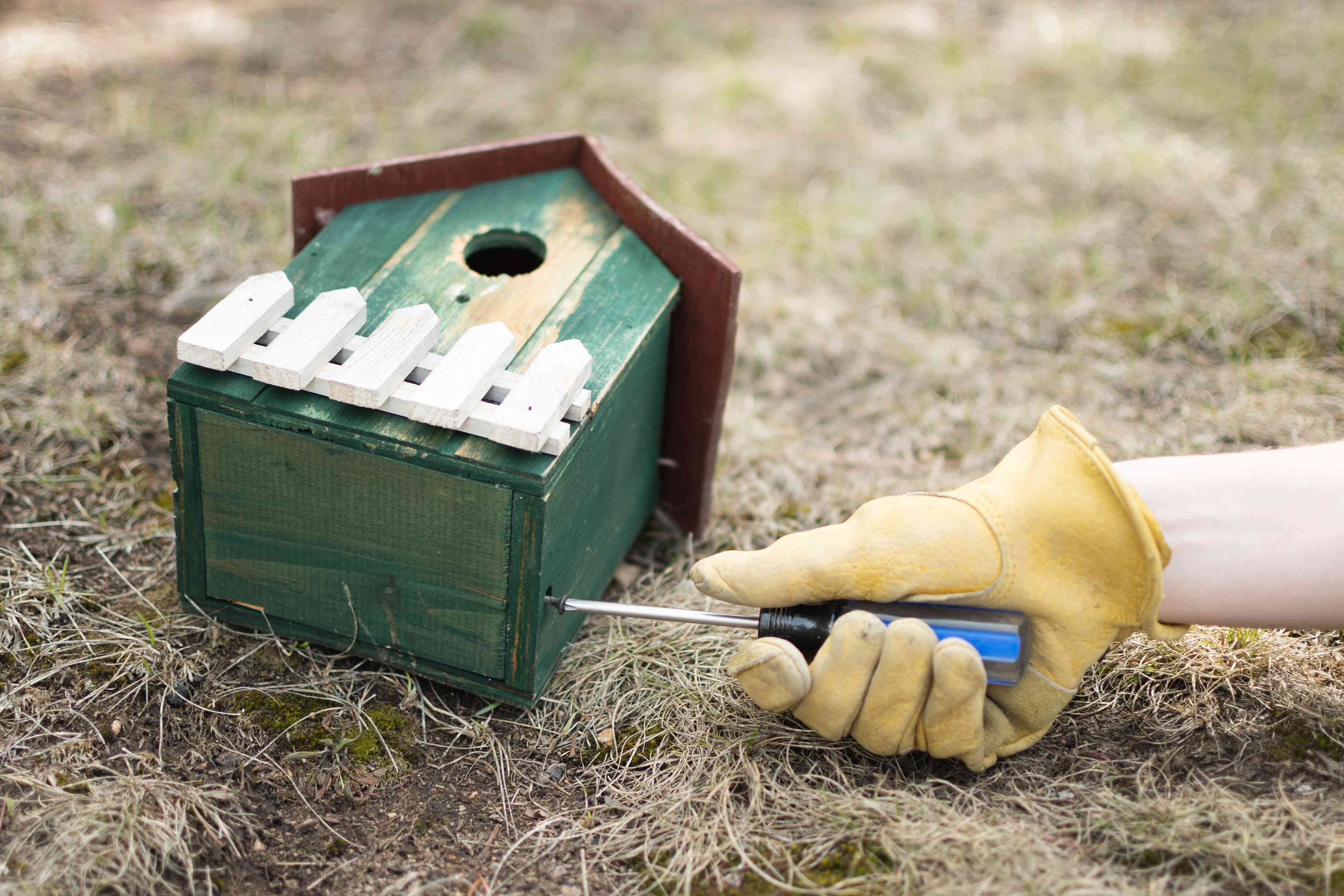 Wooden green birdhouse laying on ground and being unscrewed from the bottom