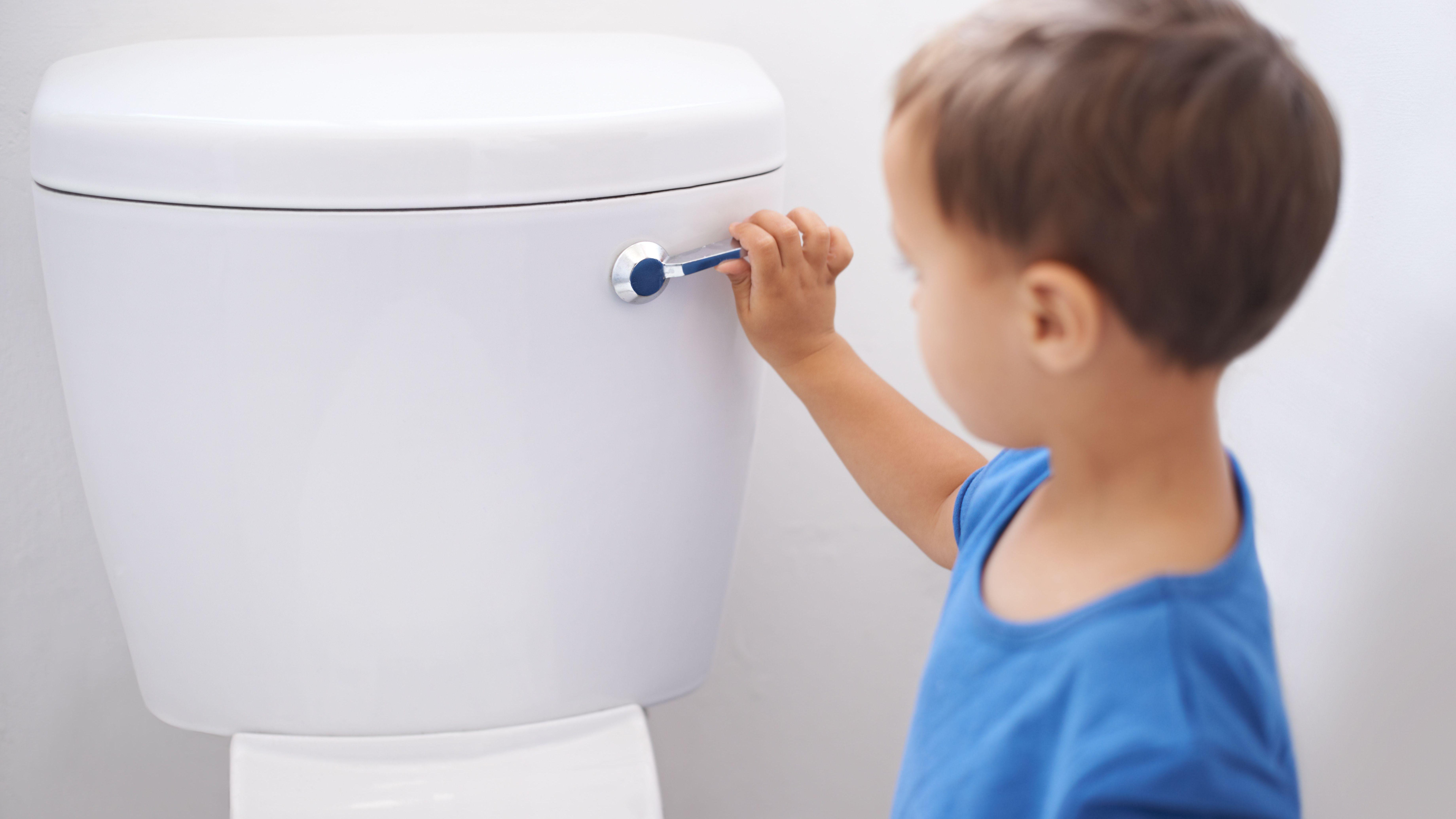Toilet Flush Valve Types and Sizes