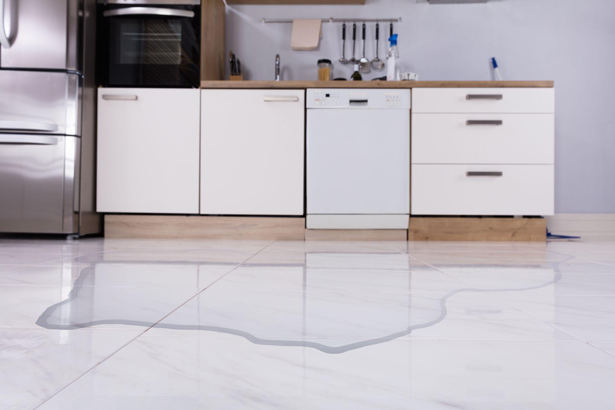 Dishwasher Door Leaking