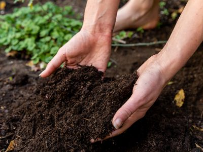 Soil from ground being picked up by hand closeup