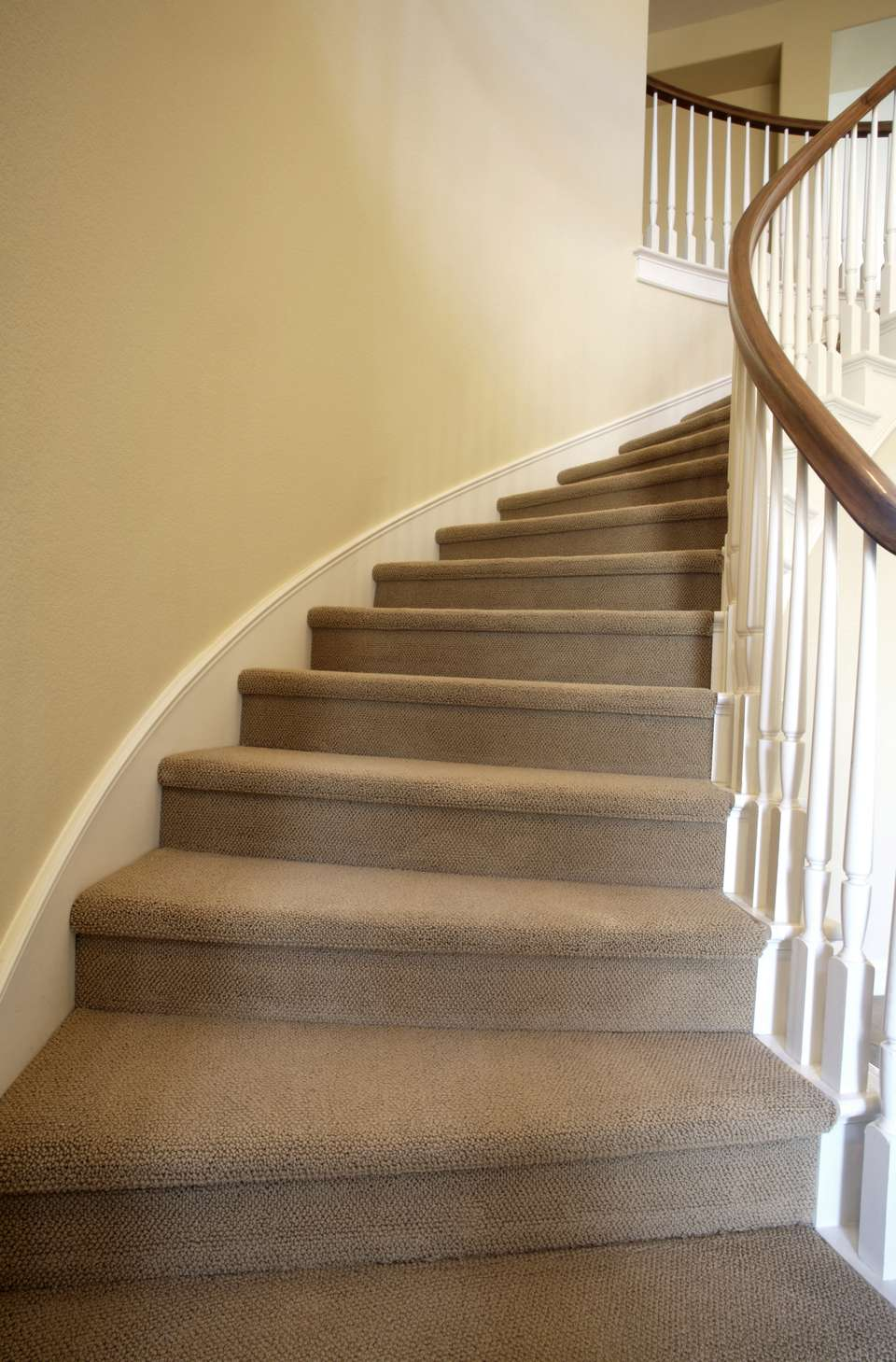 Curved staircase featuring neutral beige carpet