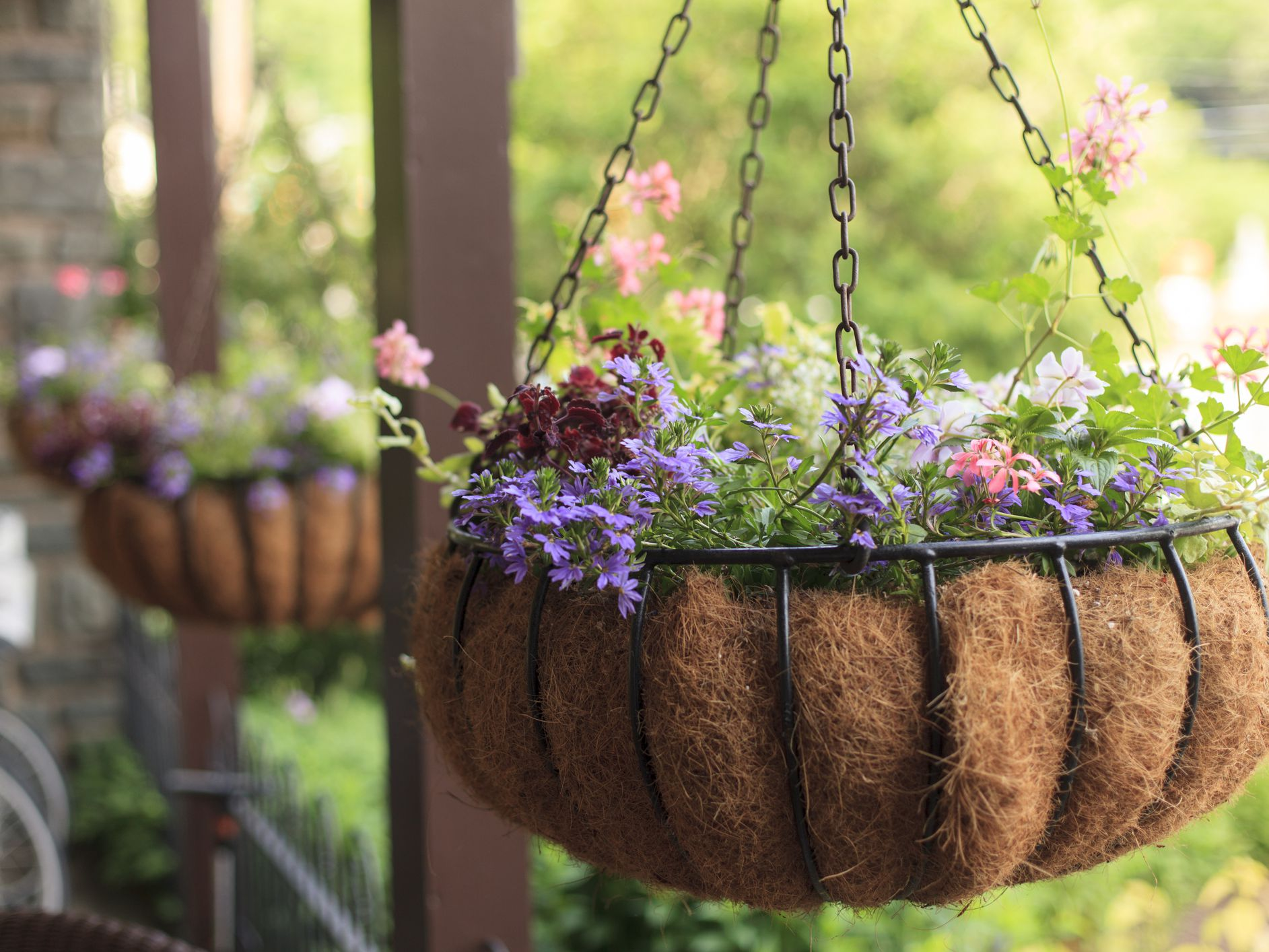 How To Plant A Hanging Flower Basket