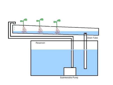 Nutrient Film Technique Hydroponic Gardens