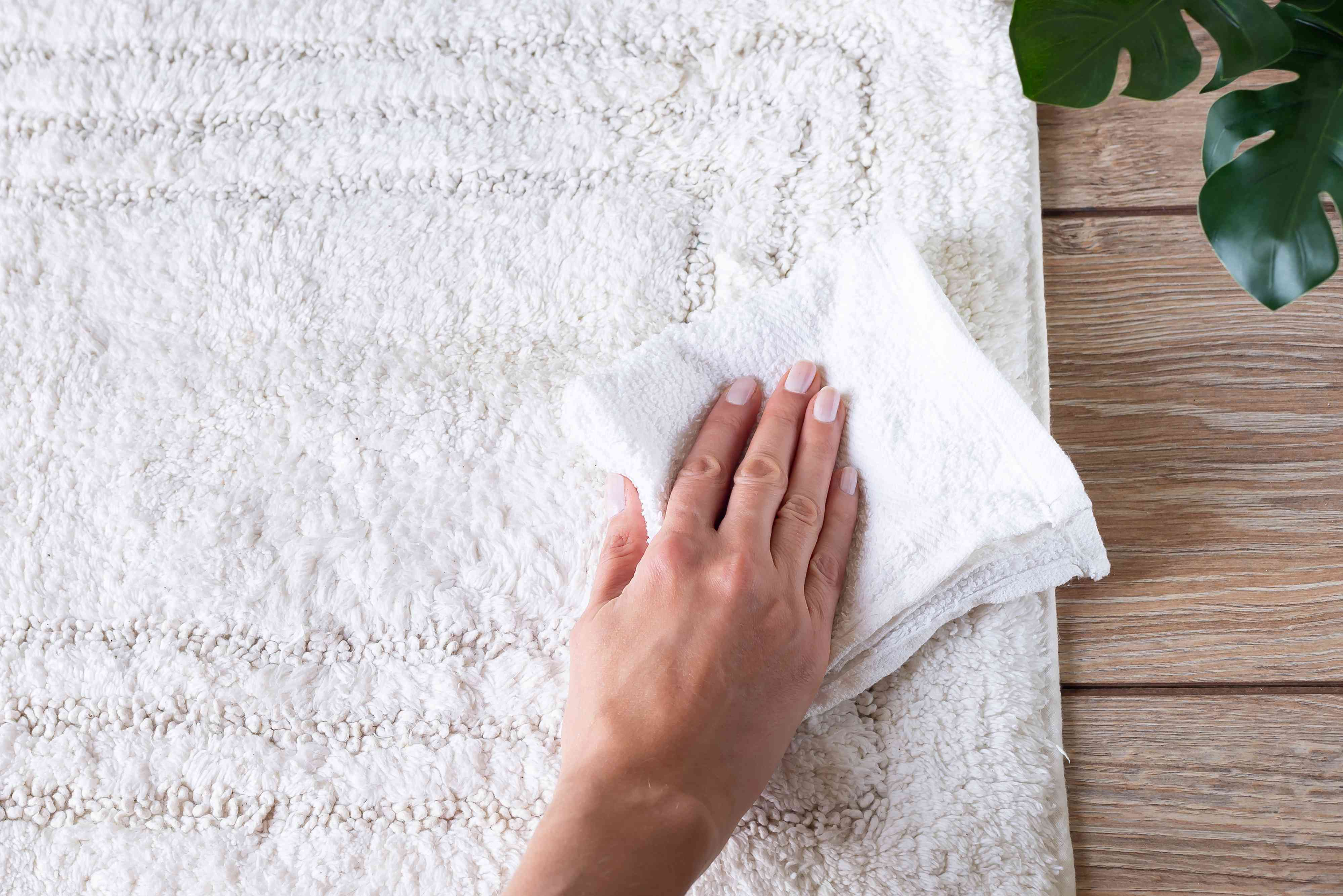 person blotting a stain on a rug