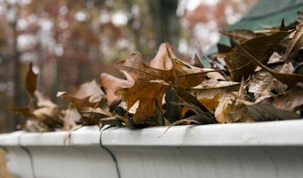 Close-up of dead leaves overflowing a gutter