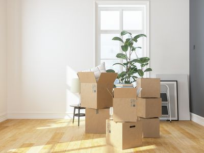 Cardboard Boxes at new apartment