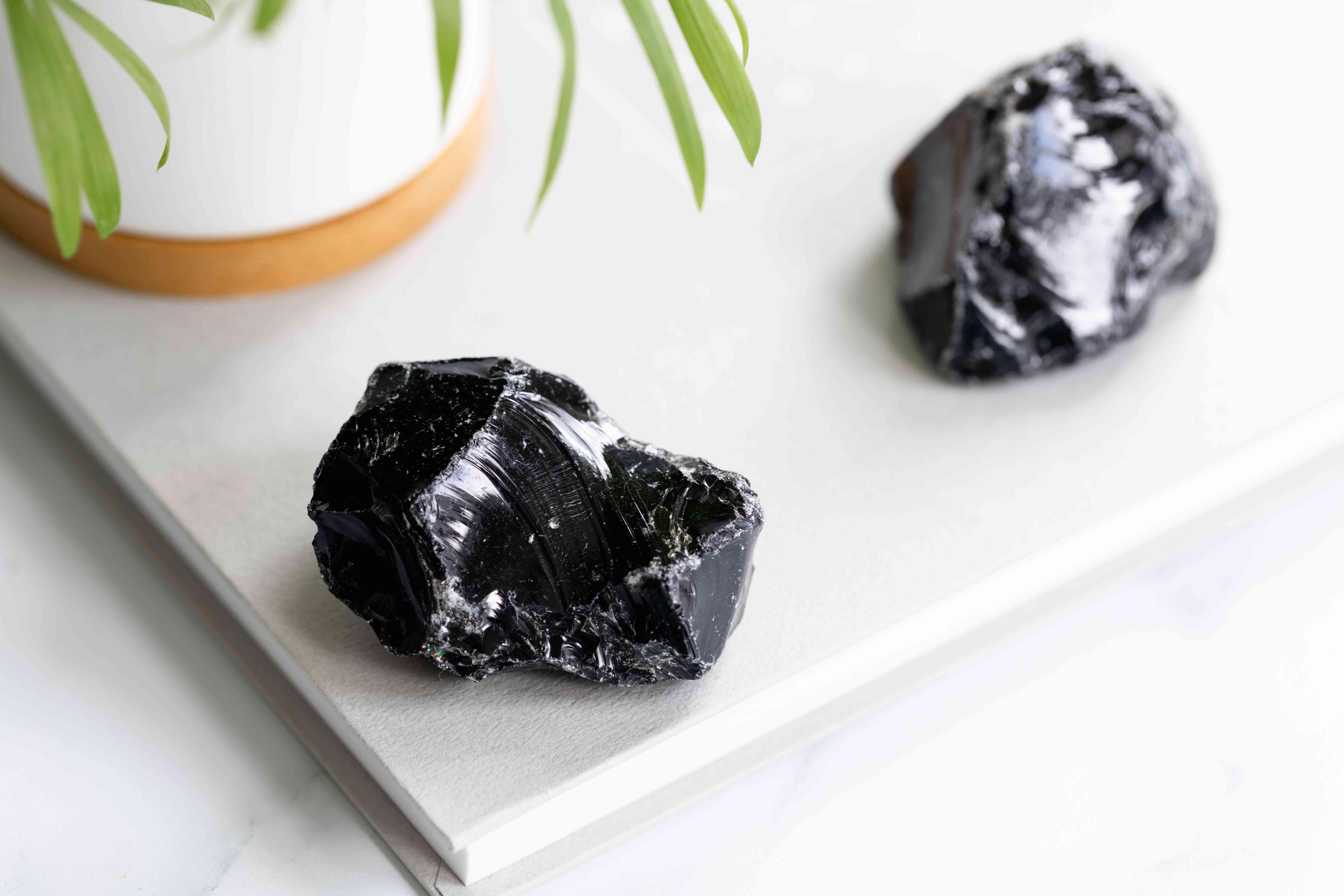 pieces of black obsidian near a plant