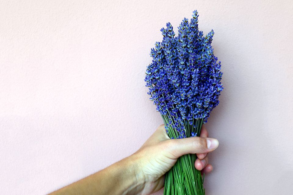 Applying this perfect purple lavendar color paint to your walls yields many fun results