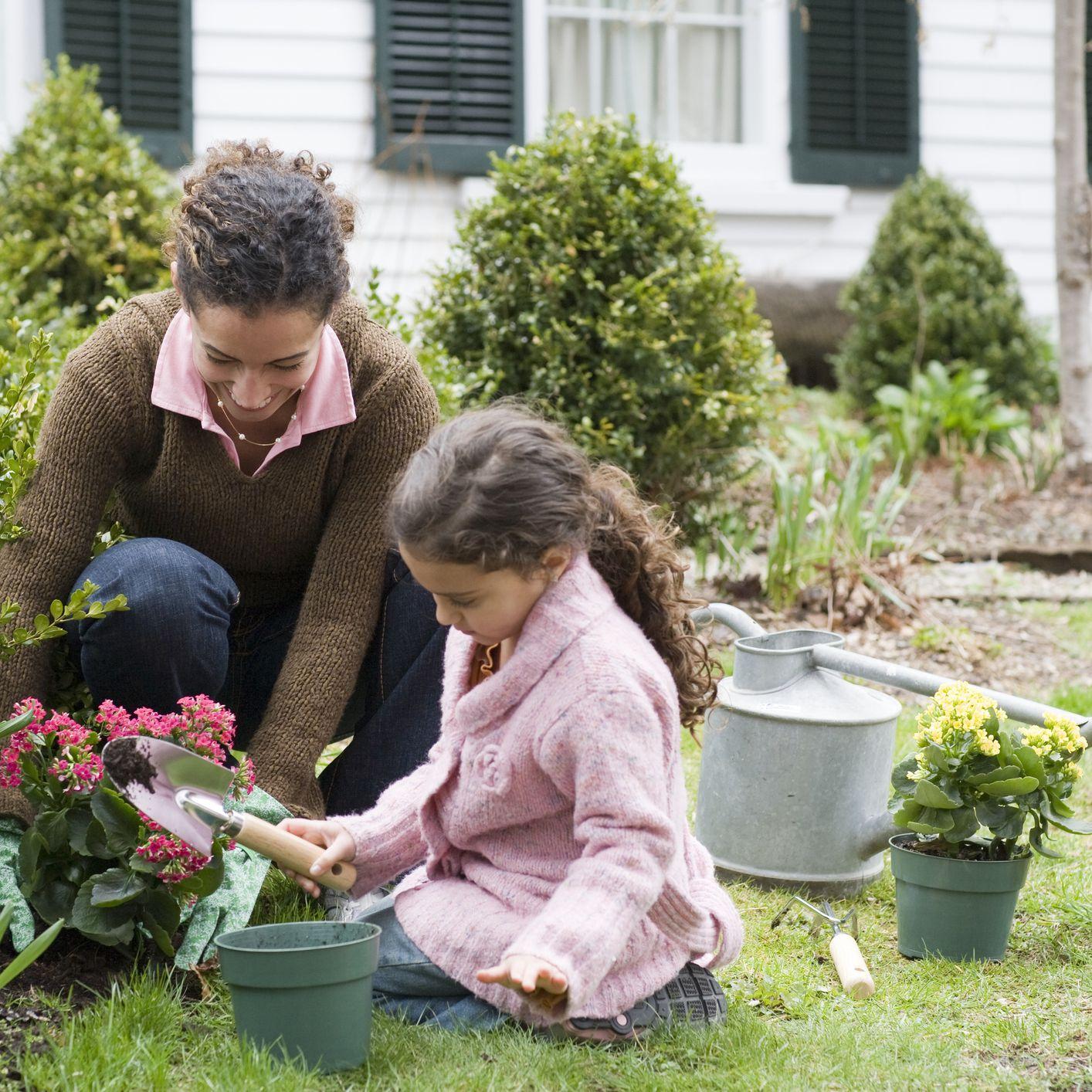 Starting A Garden