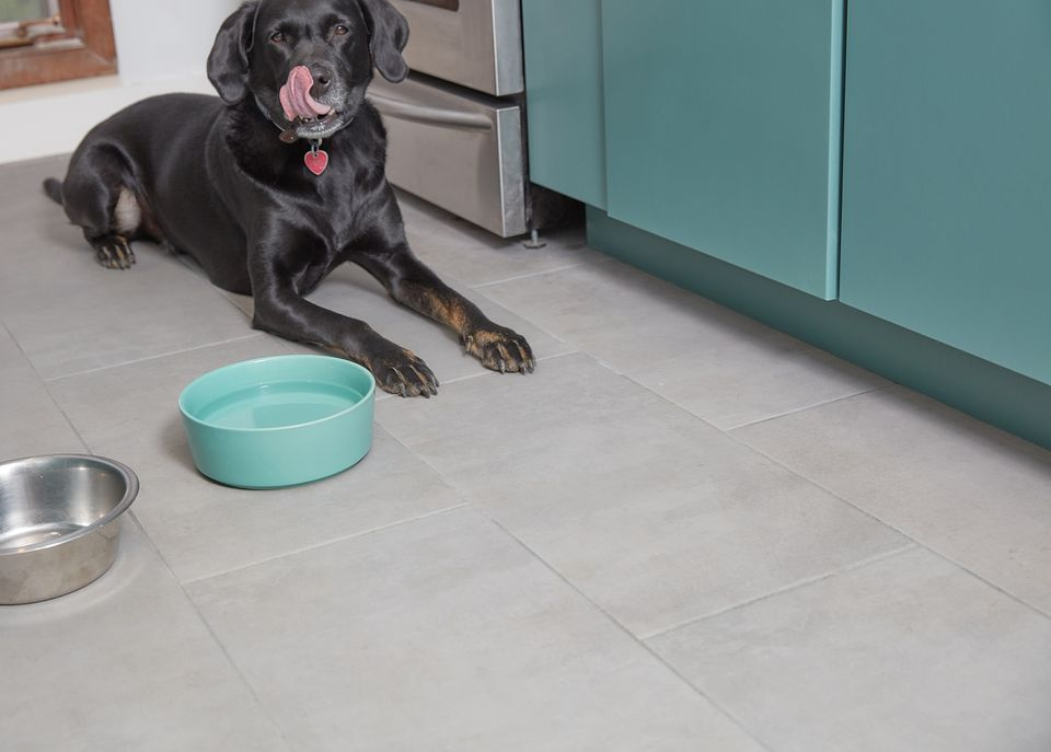 Black dog licking face on pet proof kitchen floor next to teal bowl with water