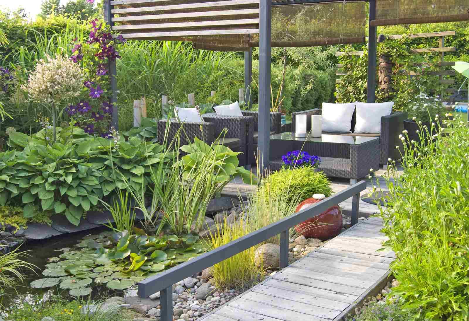 Water Garden and Deck