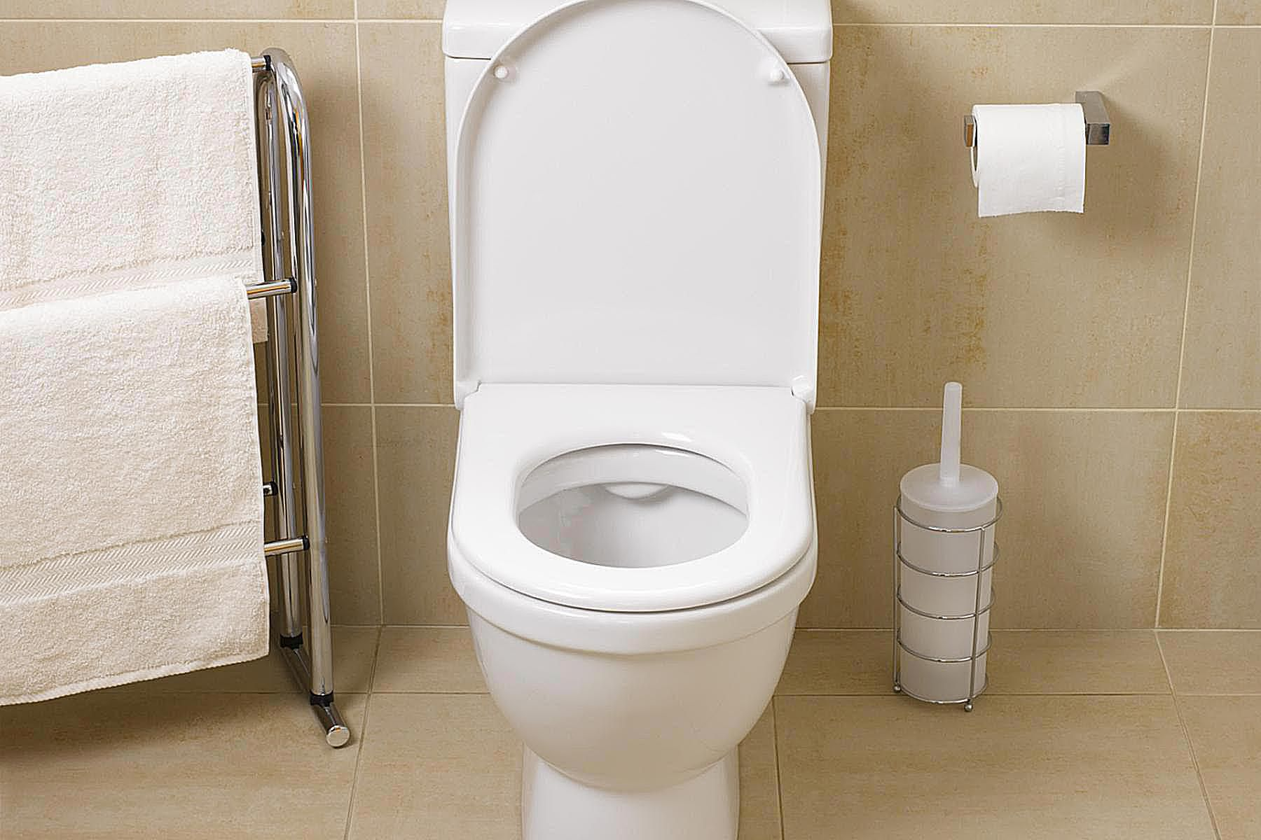 Three Items To Keep On The Floor Near Your Toilet