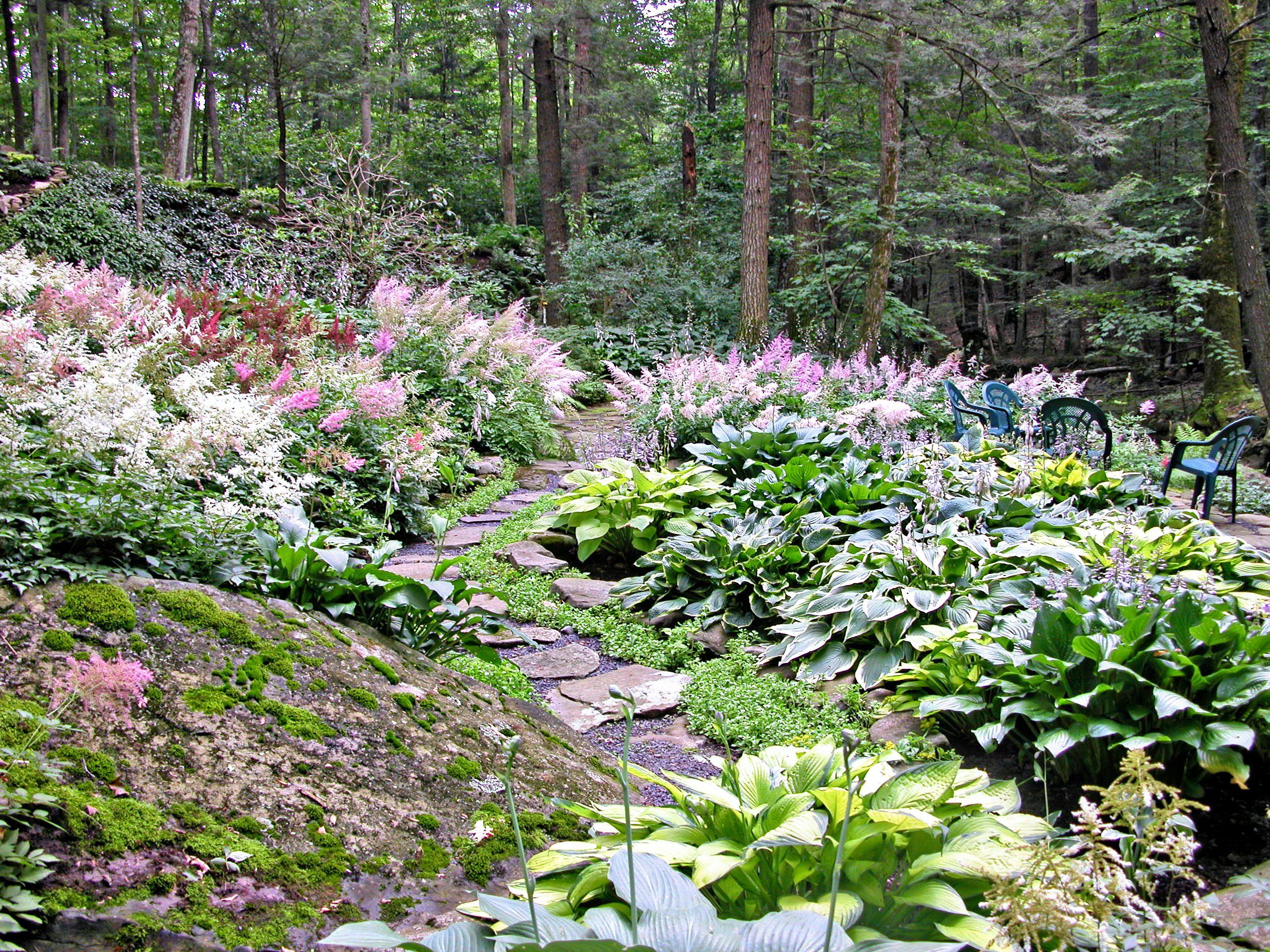 Hillside Landscape Design Ideas Kusmun