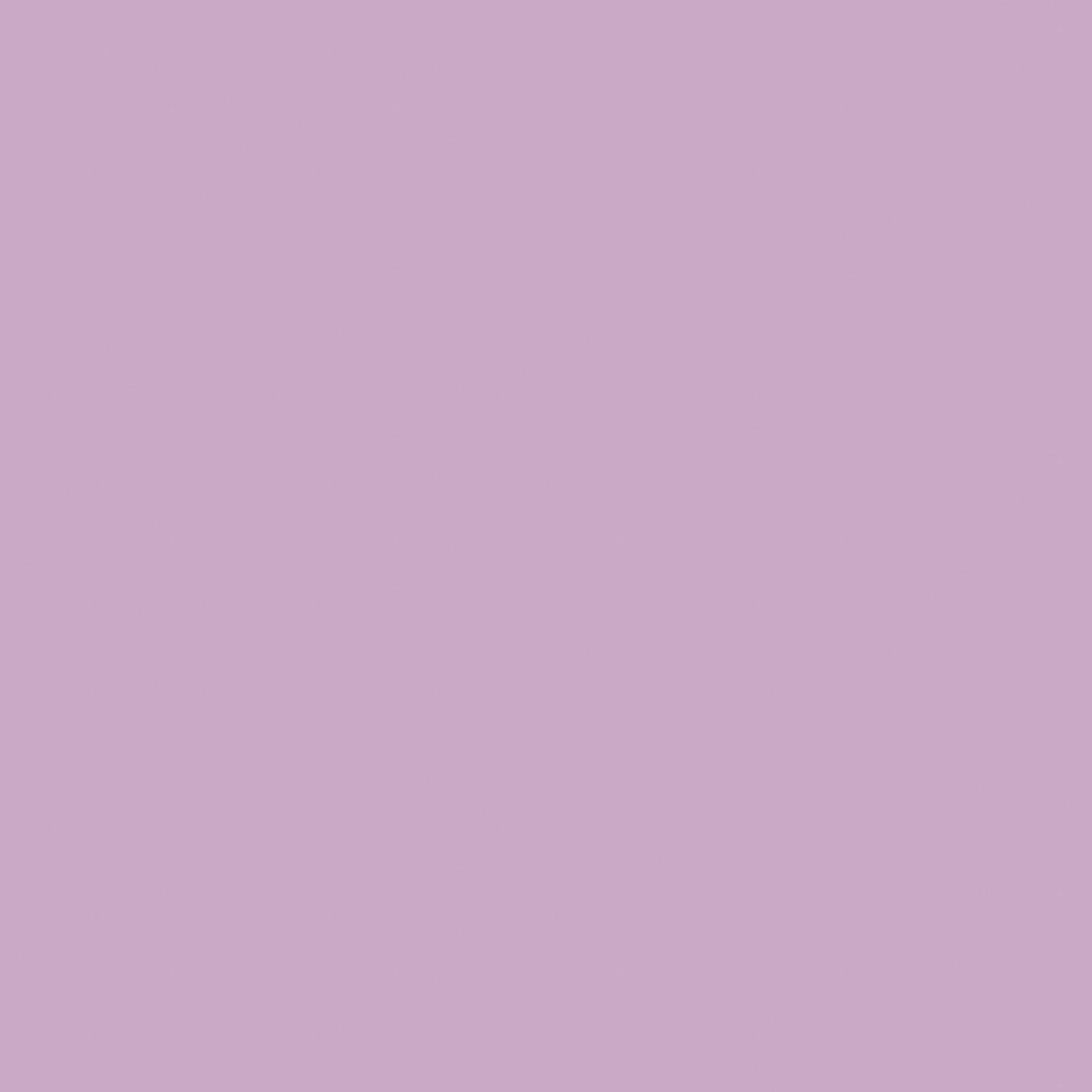 Matte Soft Lilac by Krylon