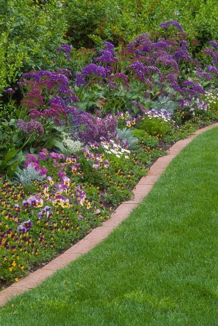 Statice, pansies, and primulas