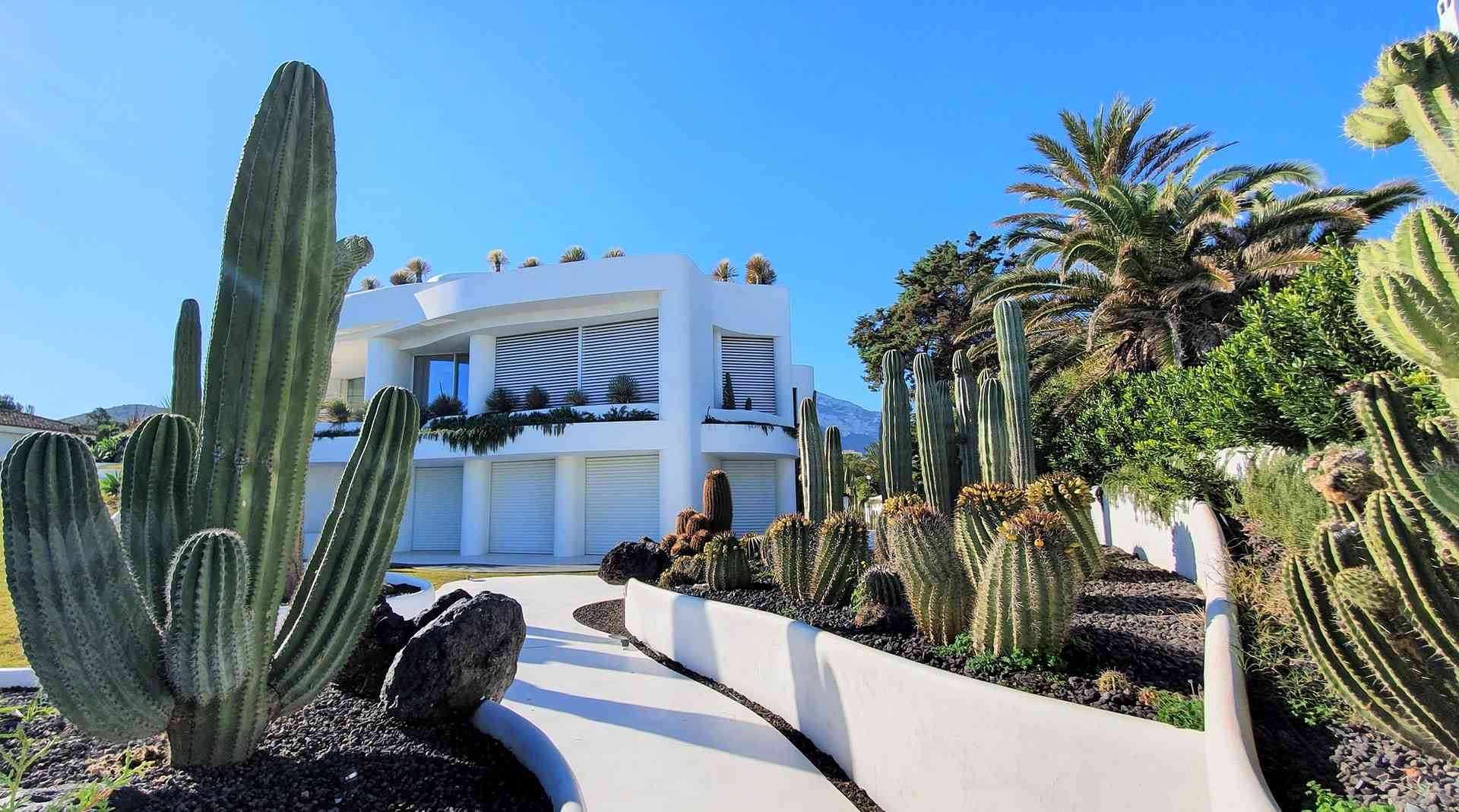 Xeriscape landscape with Cacti in front of white modern Mediterranean home