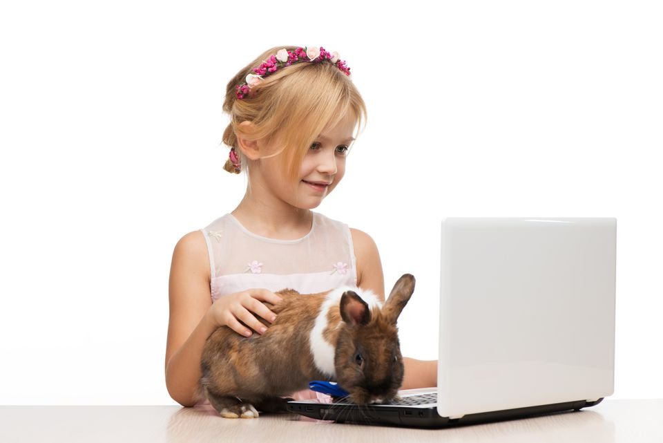 Girl and brown bunny are near the computer