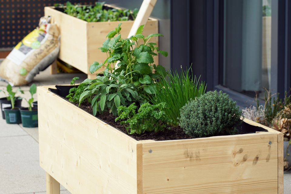 raised garden bed with legs