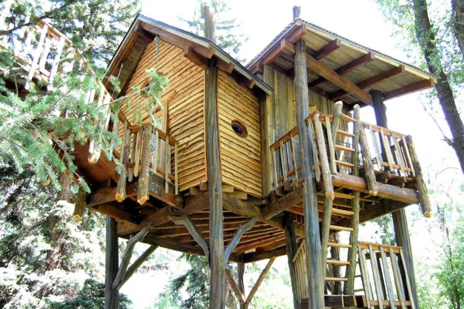 treehouse guest house