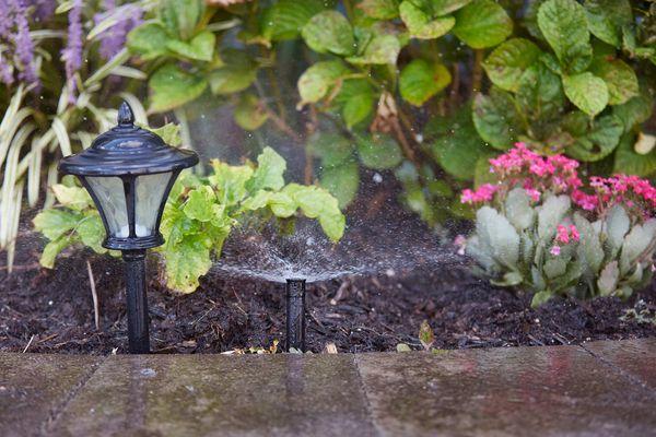 Lawn irrigation sprinkler spraying water across various lawn plants, pathway lamp and sidewalk