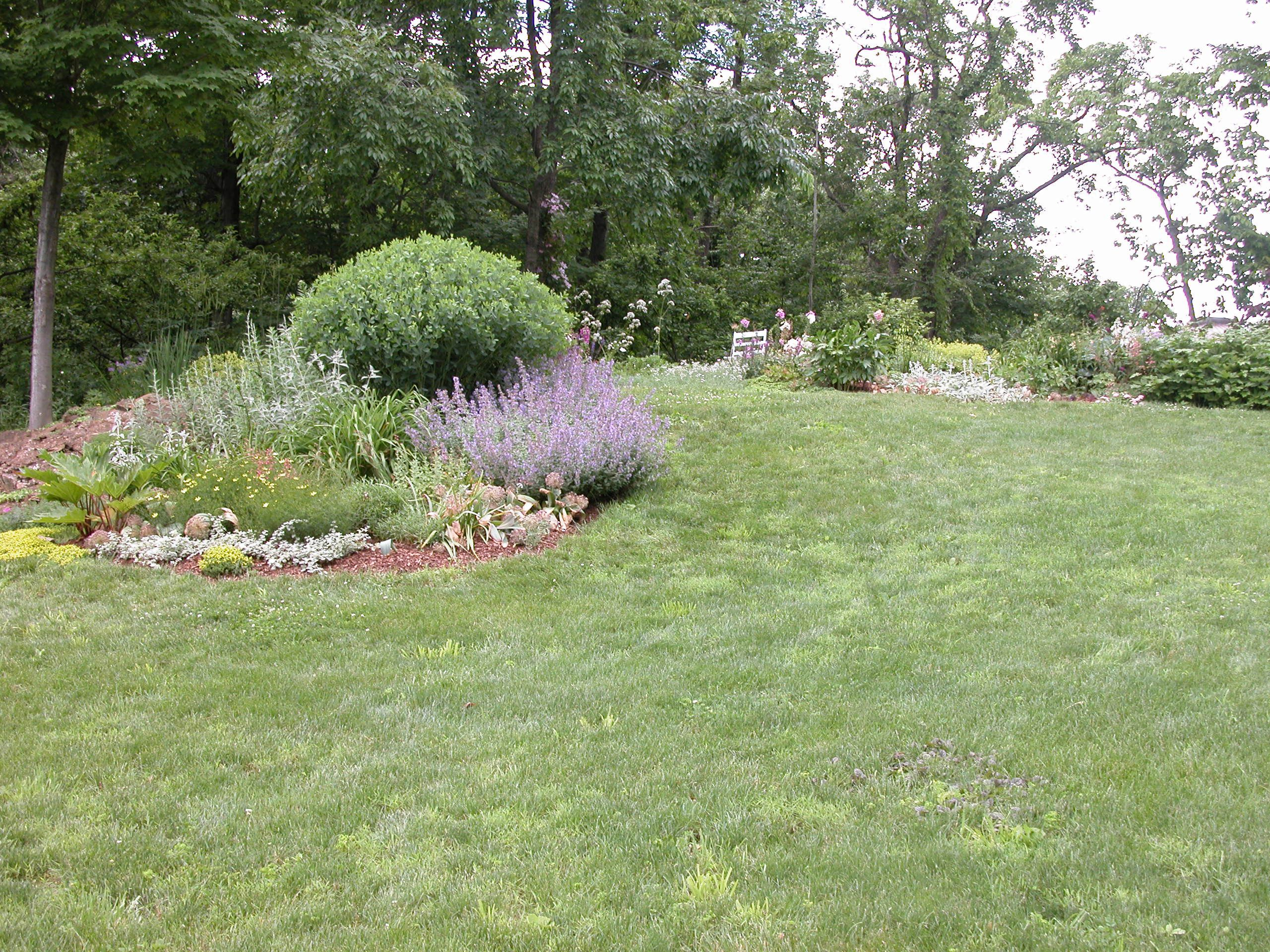 Garden bed in the middle of a yard