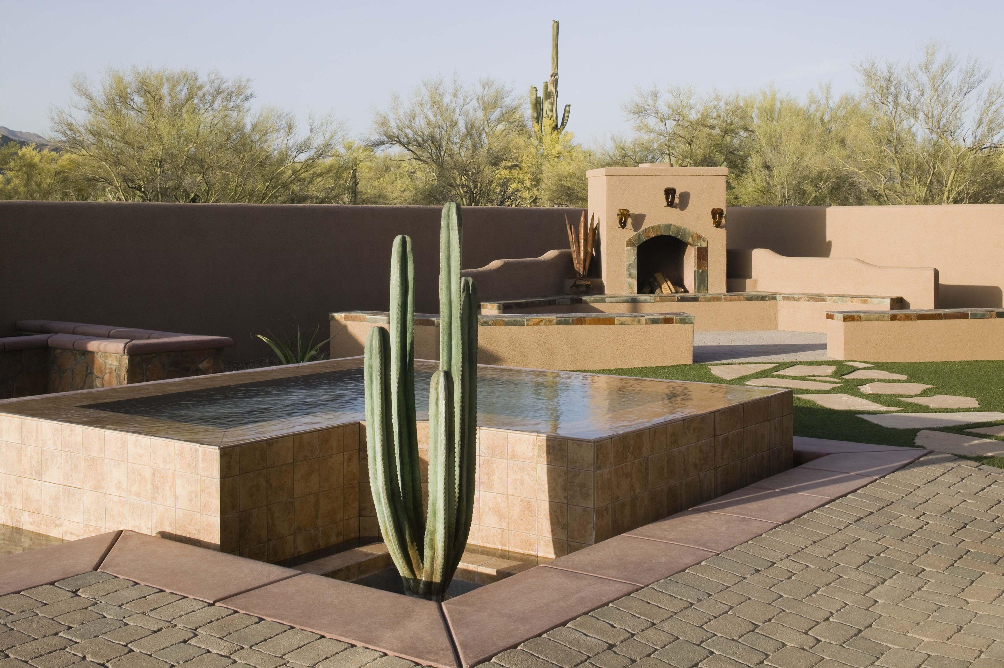 Una bañera de hidromasaje con paisajismo de cactus