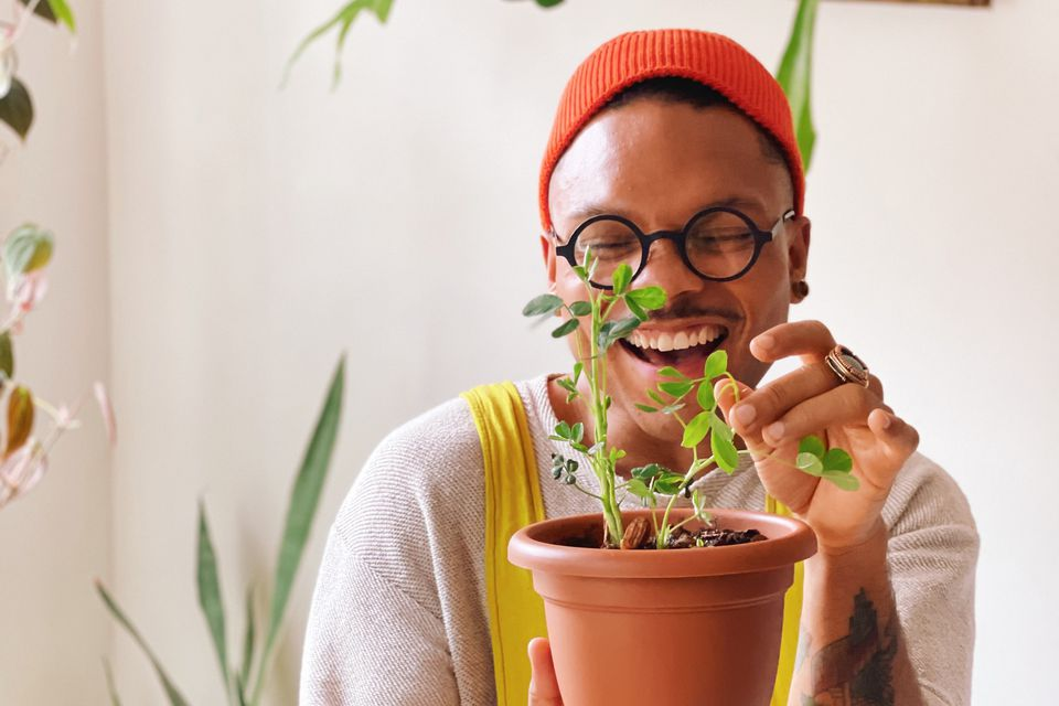 The Plant Kween Christopher Griffin