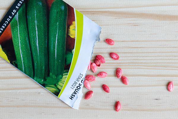 packet of vegetable seeds