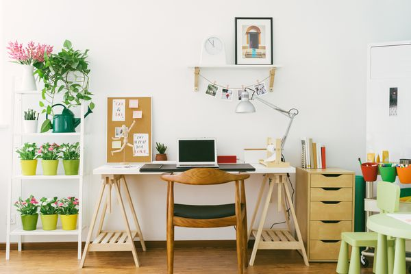 Organized desk area with nearby shelf adorned with potted plants.