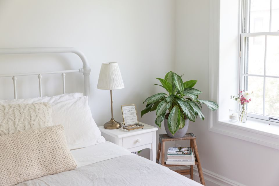 plants used in feng shui in the bedroom