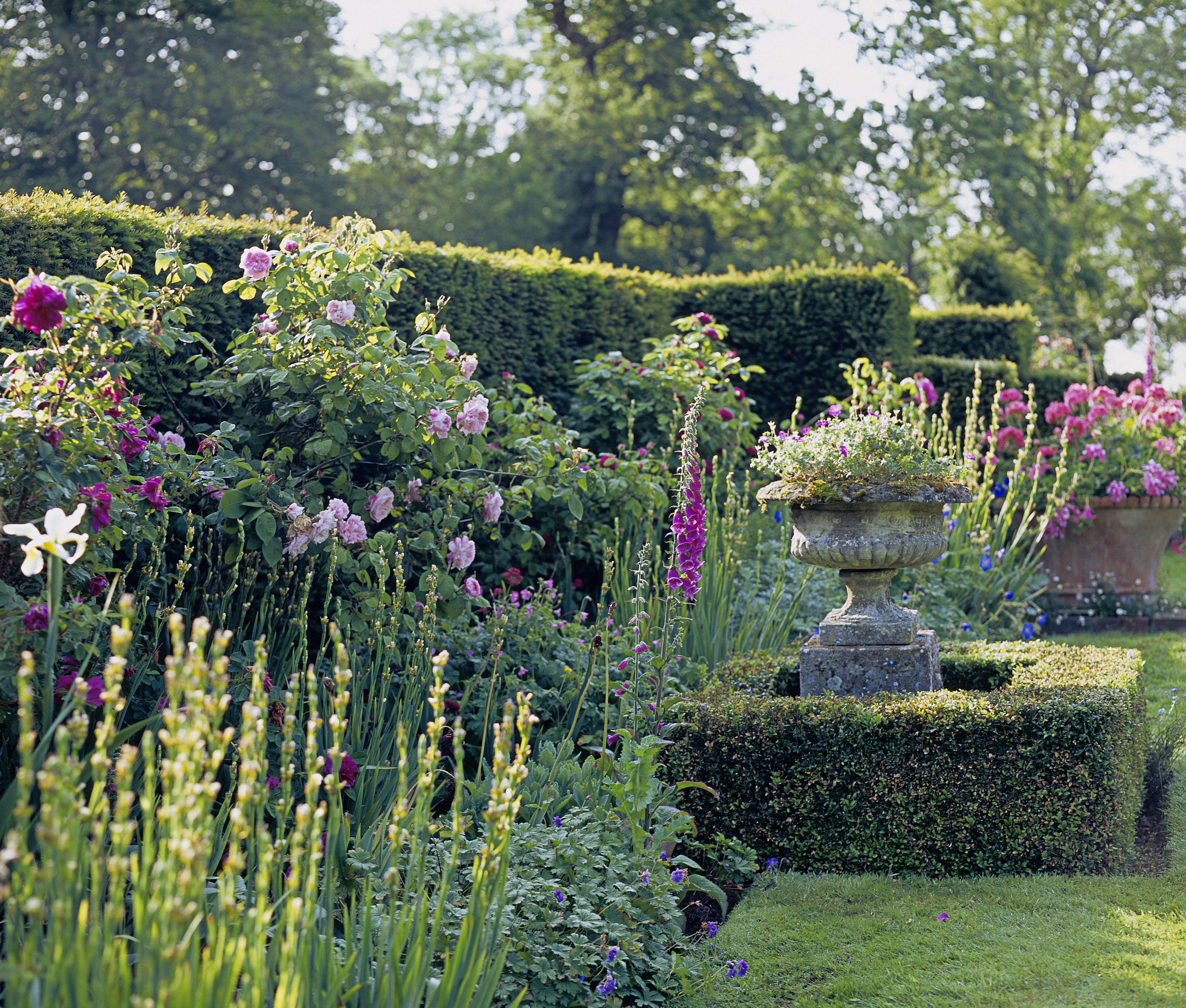 Jardín de flores formal